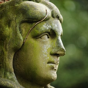 Statue head in Belgrave Hall and Gardens