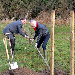 Tree planting at Castle Hill Country Park