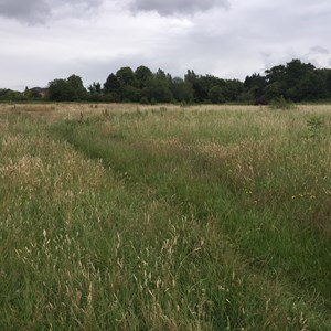 The Franklyn Fields site in Aylestone Leicester